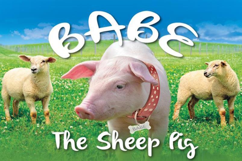 Babe The Sheep Pig