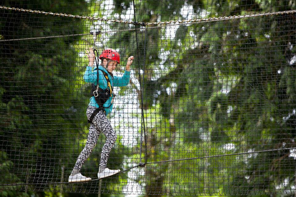 High Ropes Walk