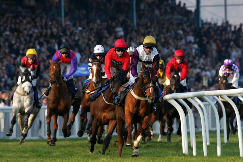 Newton Abbot races